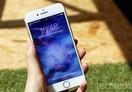 Thumb 5662e9888d2d1c3a5aad86c86f8e4064